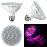 9W E27 200 LED Grow Light Full Spectrum Indoor Rode + Blauwe Hydroponic Planten Veg Lamp