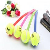 DehondwerpthetStukspeelgoed van de Tennisbal met Puppy van het Handvat het Interactieve Speelhuisdierenspeelgoed