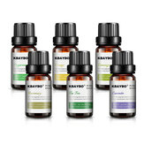 Pure Natural Plant Extracts Essential Oils Set For Diffusers