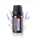 Aromatherapy Diffusers Essential Oil Natural 10ml Pure Plant Aroma Fragrance Body Massage