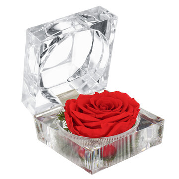 Eternal Flower Decoration Ring Scatola Colorful Rose Wedding Gifts Jewelry Scatola